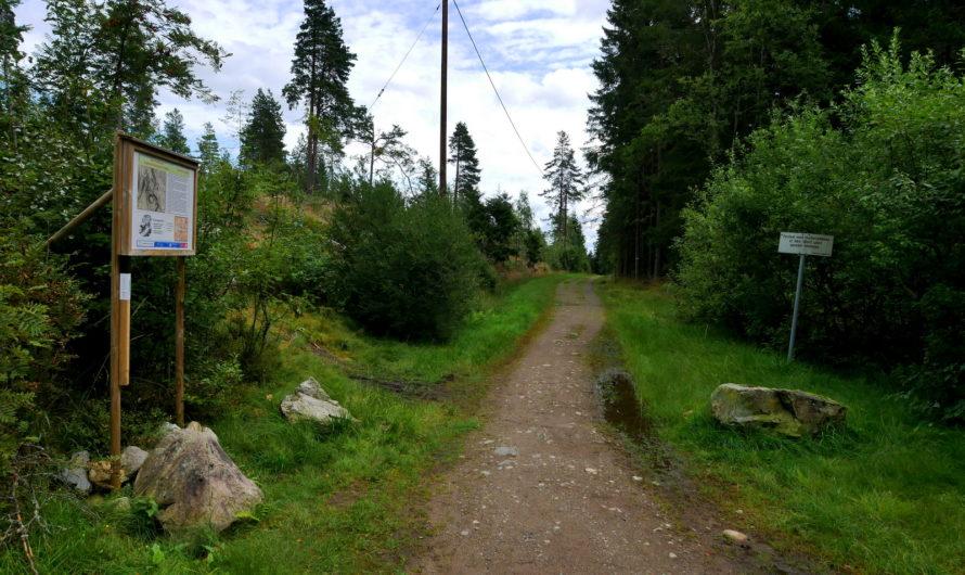 Gamle Trondheimsvei