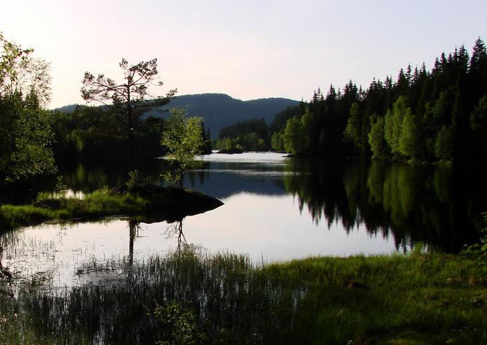Sandungen i Nordmarka