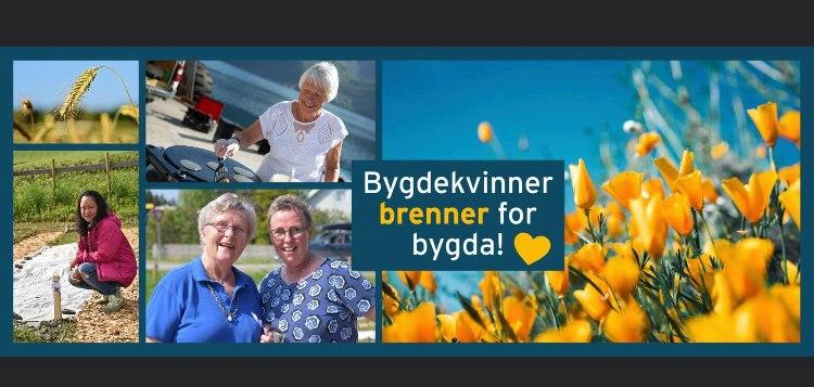 Nittedal og Hakadal Bygdekvinnelag