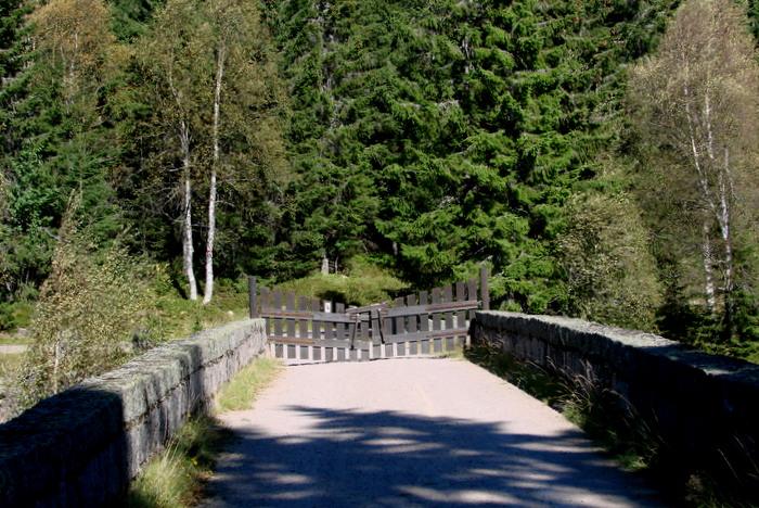 Gamle Råsjøvei
