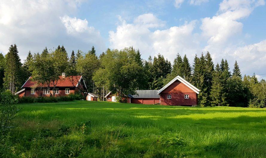 Husmannsplassen Fredrikstad