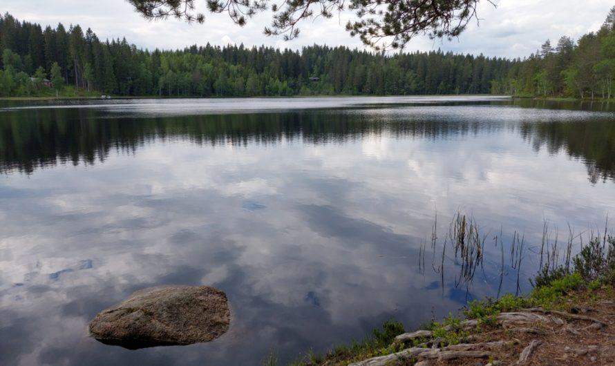 Skåltjern i Nordmarka
